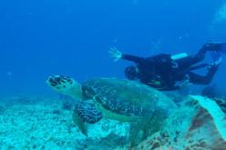 Islas del Maíz: un paraíso en Nicaragua