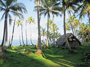 Isla de Maiz 7