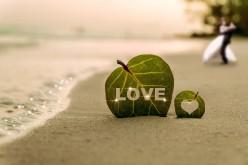Amor de lejos
