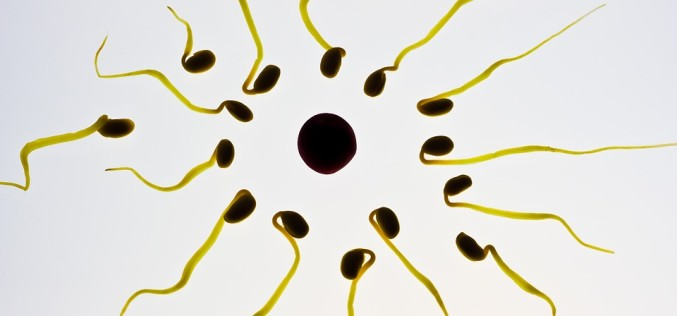 7 técnicas de vida que me ayudaron a sobreponerme a la infertilidad