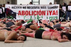 Activistas en México exigen prohibición de las corridas de toros