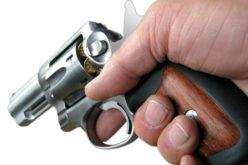 Intento de control de armas: Sin acuerdo en el Senado