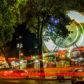 NELSON PINTO, Caracas y sus cosas