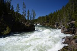 ¿Por qué está cerrado el río Yellowstone?
