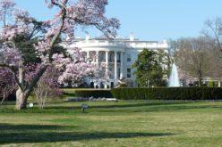 La Casa Blanca vs. La Torre Trump