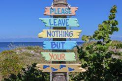 En el mar de Florida la vida es más sabrosa