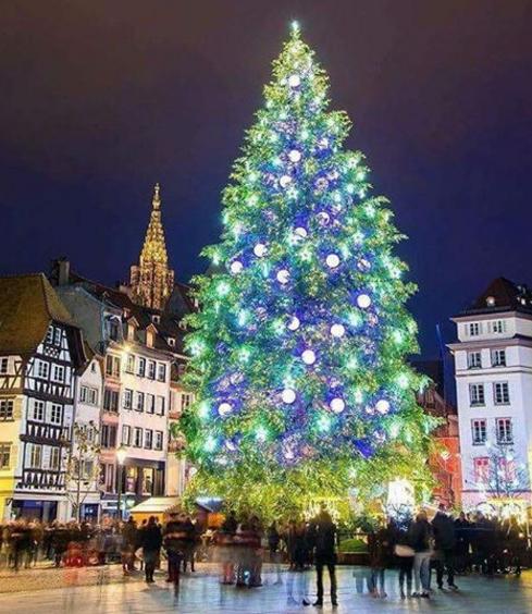Estrasburgo.