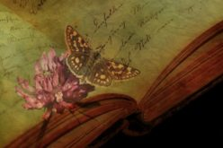 Poemas sueltos sobre recuerdos y nostalgias…