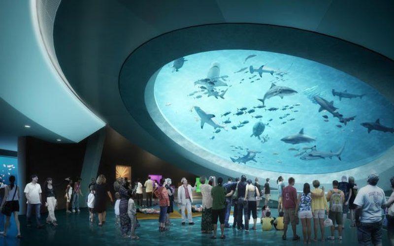 Miami tendrá un nuevo Museo de Ciencias
