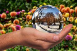 Juntos en el jardín de los cristales