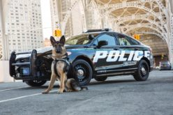 """Ford introducirá un nuevo """"vehículo de respuesta"""" para la policía"""