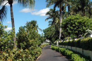 west-palm-beach-973283_960_720
