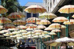 """Festival Hispano """"Bajo la sombrilla"""" congrega el arte en Miami"""
