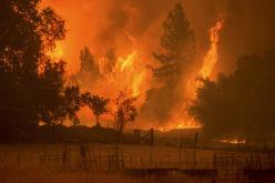 California: al menos 10 muertos y 20.000 evacuados por feroz incendio