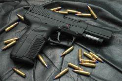 ¿Cuántas personas portan arma corta en EE.UU?