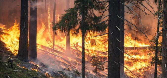 90 mil desplazados en California tras cinco días de incendios
