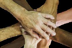El trabajo en equipo promueve la prosperidad de la cultura