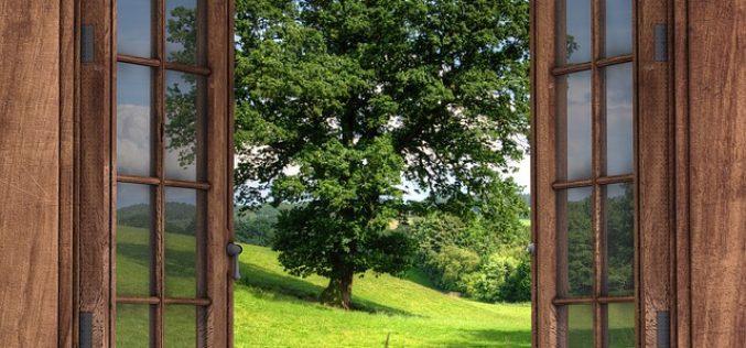 Corriendo los visillos de la ventana, un poema de Eduardo Escalante